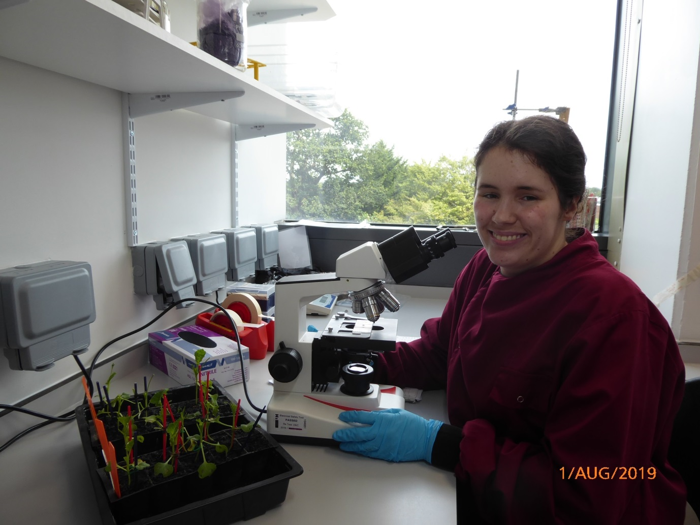 E:\BSPP\BSPP Newsletter\No. 91 Spring 2020\Summer students\12. Lucy Anscombe\Lucy working in the lab.jpg