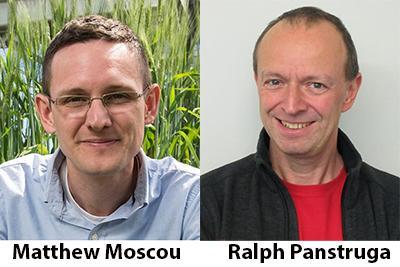 Ralph Panstruga & Matthew Moscou