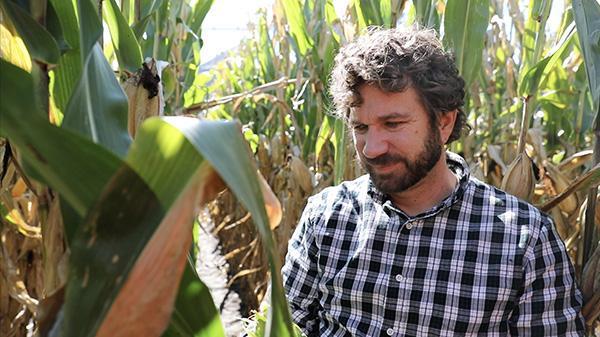Daren Mueller in corn field