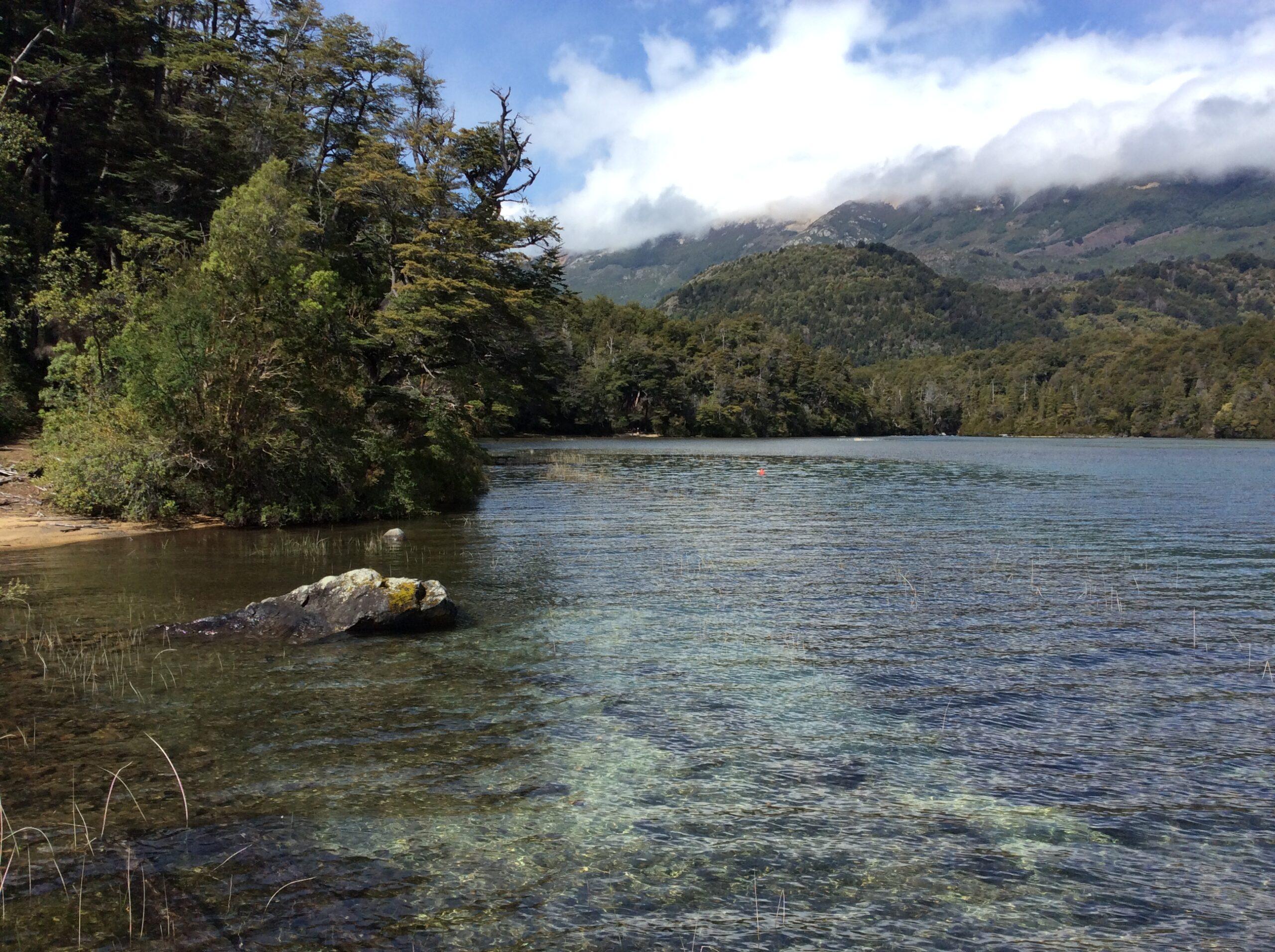 Lago Menendez in Alerces National Park